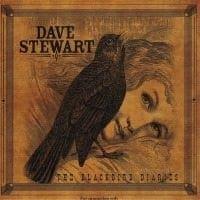 Dave Stewart – Blackbird Diaries
